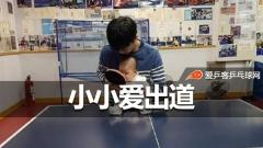 小小爱不到4个月就出道了!爱酱女儿开始学打乒乓