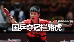 刘国梁:马龙最强樊振东需磨炼,张本智和是拦路虎