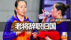 荷兰45岁乒坛老将辞去教练职务!曾胜朱雨玲有望再战奥运