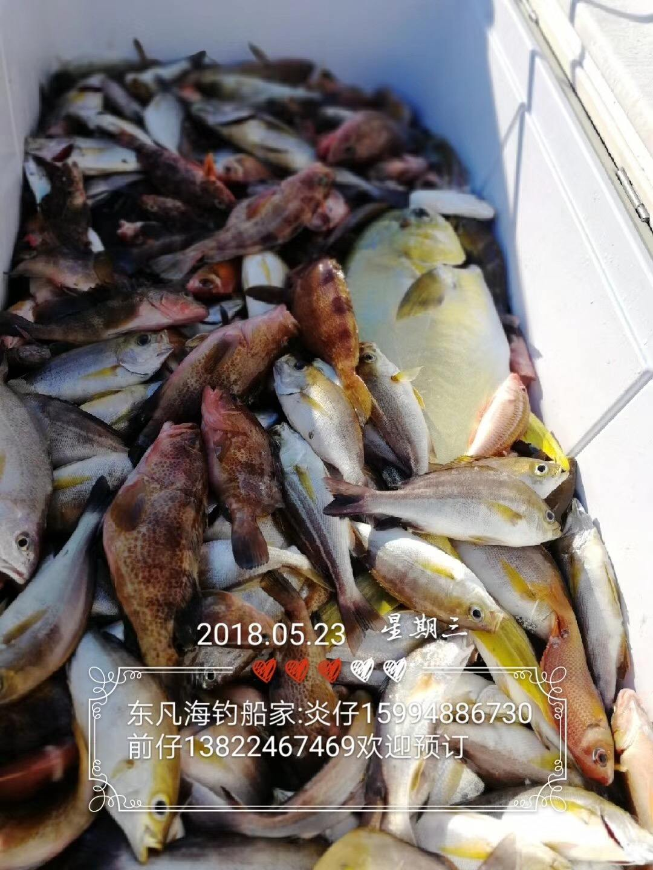(5月24日)台山东帆船钓小杂鱼
