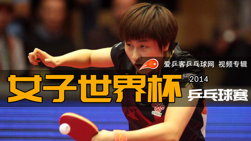 2014年女子乒乓球世界杯赛