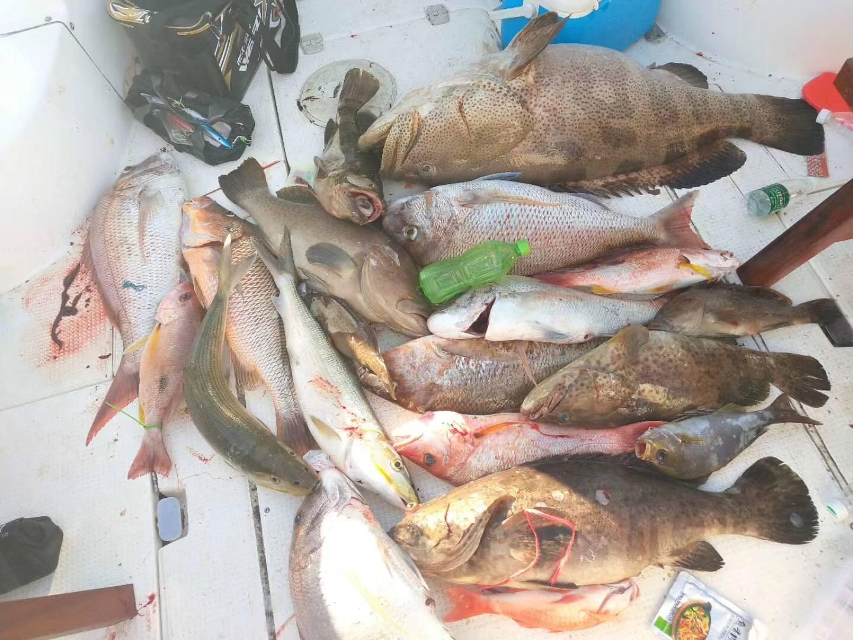 (7月13日)海南七洲船钓慢摇钓大物,钓获石斑47斤