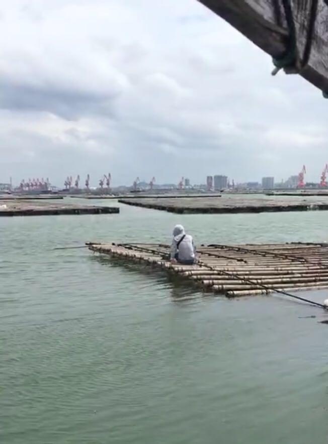 (7月16日)广西钦州港,筏钓天堂