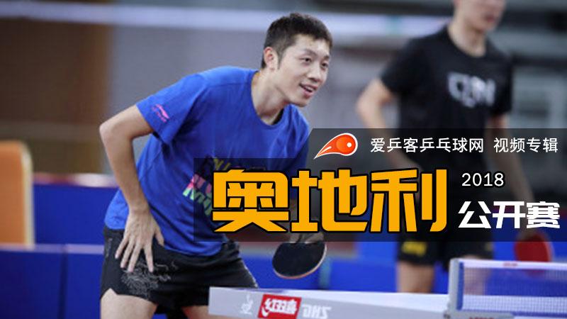 2018年奥地利乒乓球公开赛