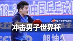 樊振东林高远世界杯冲冠!力争蜕变拿回国乒荣誉