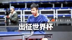 樊振东林高远出征世界杯!去年留憾今年必须拿回来
