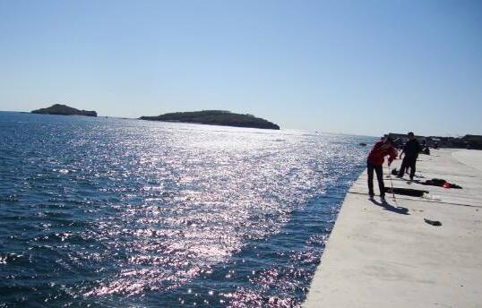北方沿海另具特色的鲻鱼钓法——拍铅钓法介绍