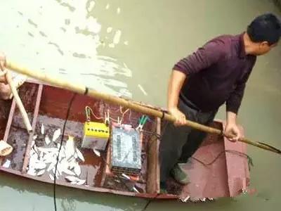 禁止电鱼,从我做起!请转发抵制!