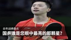 去年战绩盘点,国乒谁是您眼中最亮的那颗星?