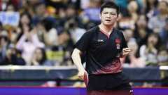 2019世乒赛谁能夺得男子单打冠军,都来预测一下?