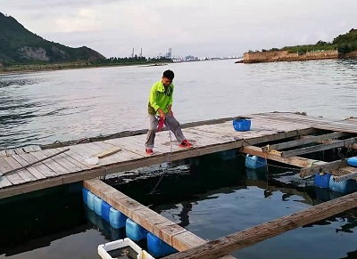 鱼排筏钓七大技巧总结,玩鱼排的都可以看看