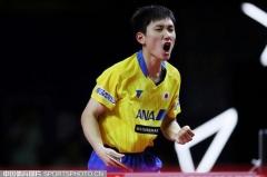 奥地利赛:国乒混双1-3惨败丢冠!张本智和怒吼夺冠军