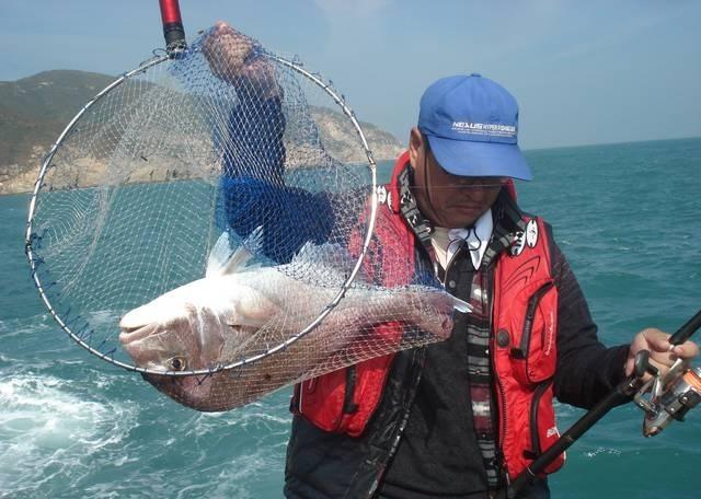 技巧文章 | 海钓真鲷鱼的诱饵笼钓法的运用技巧