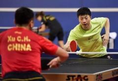 国乒海外专心备战世乒赛 脚踏实地锤炼更强大自己