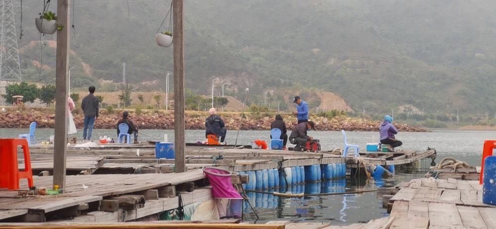 立鱼持续有口,来爱钓客海钓基地,爽拉解毒还能拿大奖